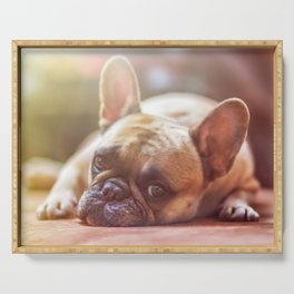 Cute French Bulldog Photo Serving Tray