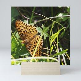 Butterfly at Signal Mountain Mini Art Print