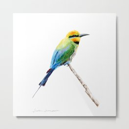 Rainbow Bee Eater by Teresa Thompson Metal Print