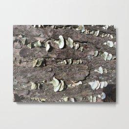 Intimate Tree #2 Metal Print