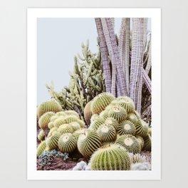 Cactus Garden #2 Art Print