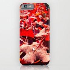 Autumn leaves iPhone 6s Slim Case