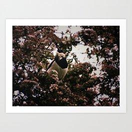 London Hidden Magpie Art Print