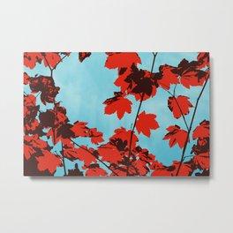 Autumn Clouds Metal Print