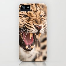 Amur Leopard iPhone (5, 5s) Slim Case