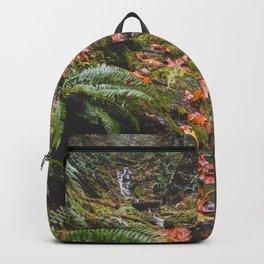 PNW Fall Waterfall Backpack