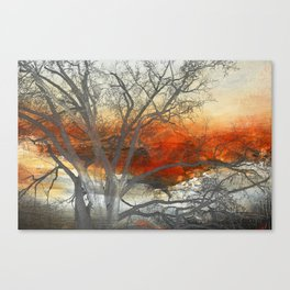 Sunset Print  Canvas Print
