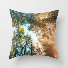 California Redwoods Sun-rays and Sky Throw Pillow