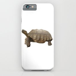 Sulcata Tortoise (side view) iPhone Case