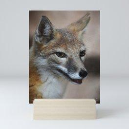 Fox Mini Art Print