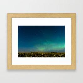 Aurora in the Canola Framed Art Print