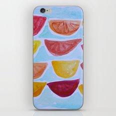 Slices iPhone & iPod Skin