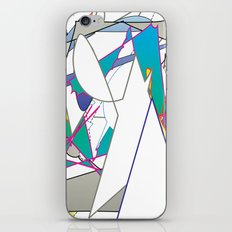 Color #8 iPhone & iPod Skin