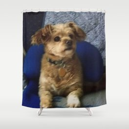 The Cute Pup Shower Curtain