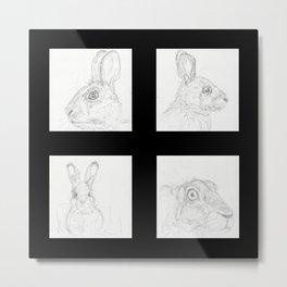 Rabbits 2 Metal Print