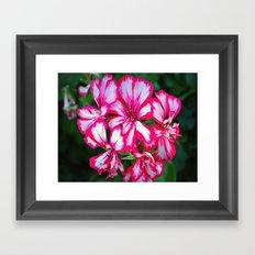 flowers xx Framed Art Print