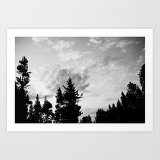 MORNING WOOD Art Print