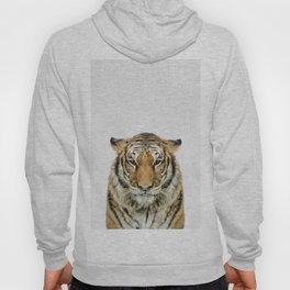 African Tiger Hoody