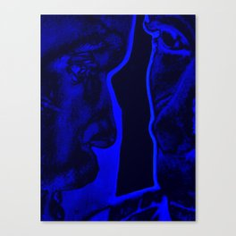Cabsink16DesignerPatternBMM Canvas Print