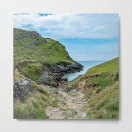 Footpath to Mewslade Bay on the Gower, Wales Metal Print