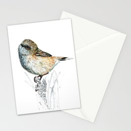 Mr Riroriro, the New Zealand Grey Warbler Stationery Cards