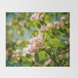 Apple Blossoms (1) Throw Blanket