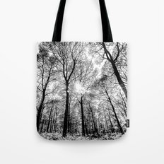 The Forests Sketch Tote Bag
