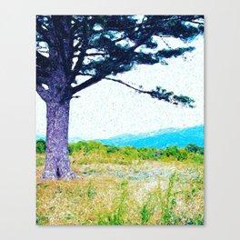 Shenandoah Overlook Canvas Print