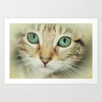 alisa burke Art Prints featuring FELINE BEAUTY by Catspaws