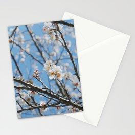 Plum Blossom Pattern 1 Stationery Cards