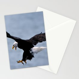 Bald Eagle Attack Stationery Cards