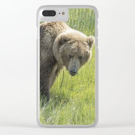 Don't Mess with Mama Bear Clear iPhone Case