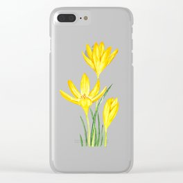 yellow botanical crocus watercolor Clear iPhone Case