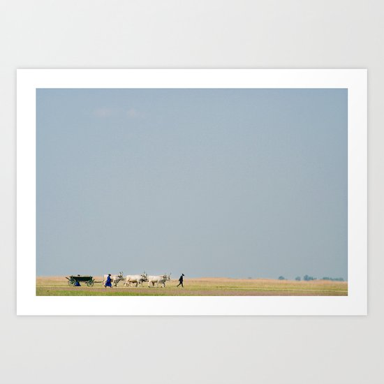 Shepherds Art Print