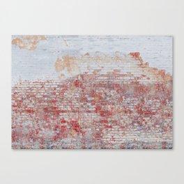 Cute Bricks Canvas Print