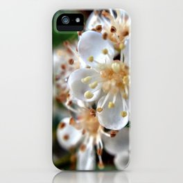 Flowers. iPhone Case