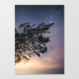 Amazing starry scene. Silhouette of a tree with colorful starry sky. Canvas Print