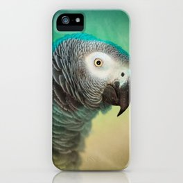 Pictorial African Gray Parrot iPhone Case