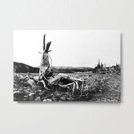 004 Metal Print
