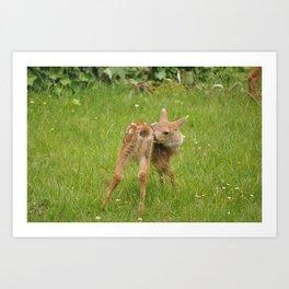 Cute Bambi 5 Art Print