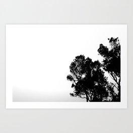 Blackwood Art Print