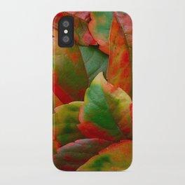 Autumn the artist iPhone Case