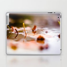 Leaf Reflect Laptop & iPad Skin