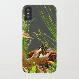 No turtles here! iPhone Case