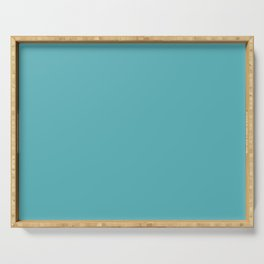 Light Teal Serving Tray