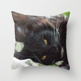 Maximus II Throw Pillow