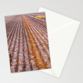 Reaped Stationery Cards