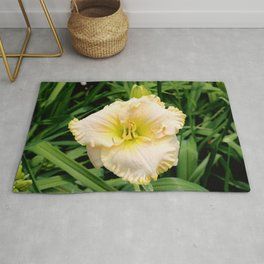 A Yellow Day Lily in Bloom Rug