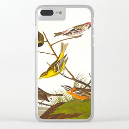 Ankansaw Siskin John James Audubon Vintage Scientific Hand Drawn Illustration Birds Clear iPhone Case