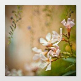 Flowers2 Canvas Print